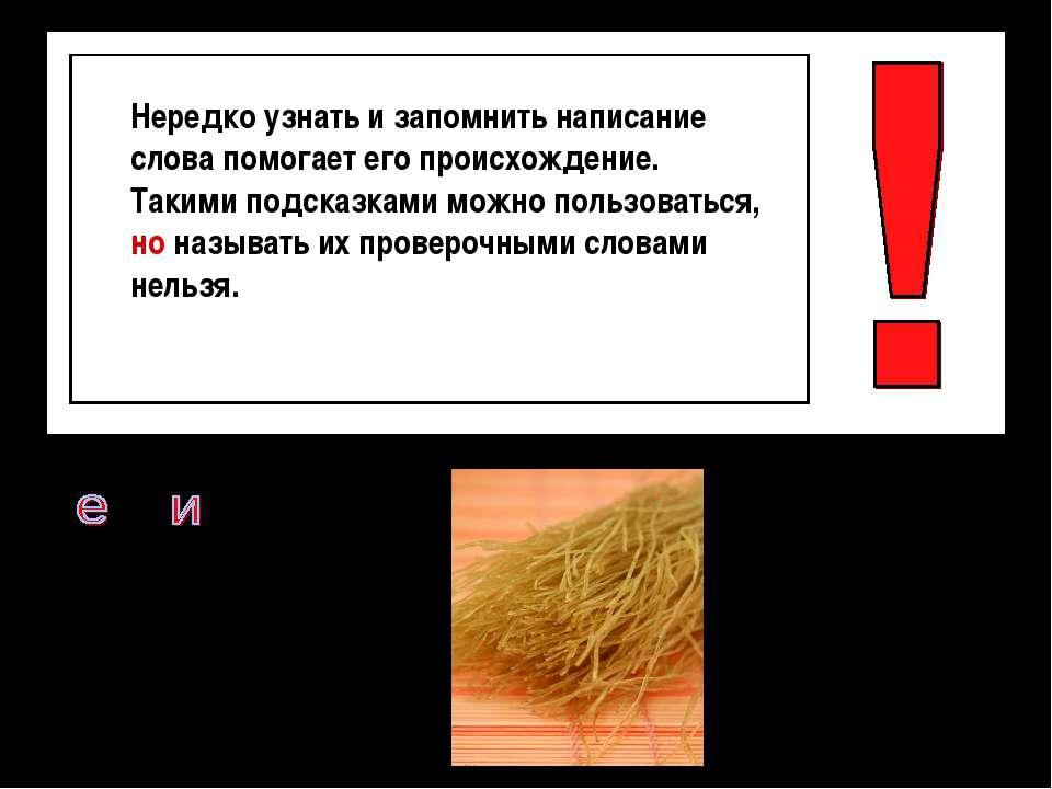 В. рм. шель – от иностранного слова «вермис», червяк