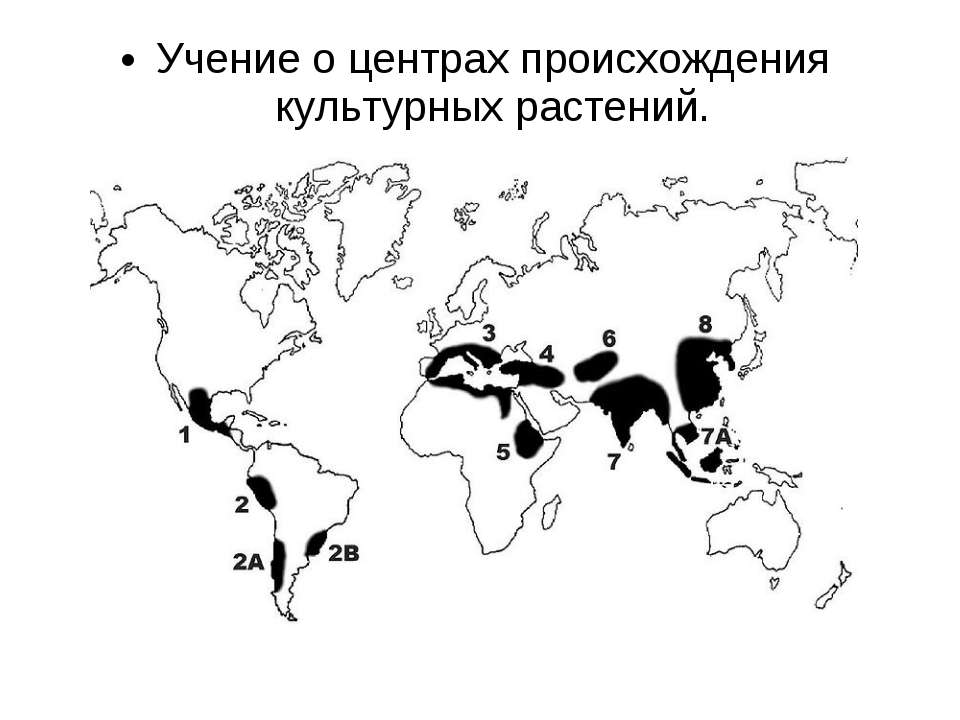 Учение о центрах происхождения культурных растений.