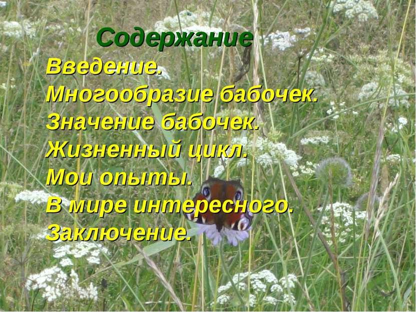 Содержание Введение. Многообразие бабочек. Значение бабочек. Жизненный цикл. ...