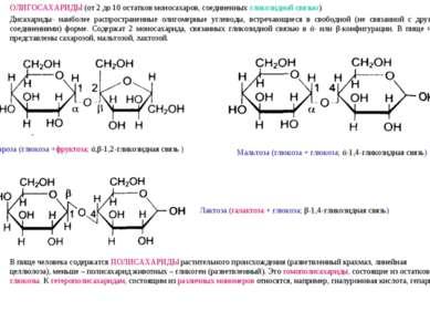 ОЛИГОСАХАРИДЫ (от 2 до 10 остатков моносахаров, соединенных гликозидной связь...