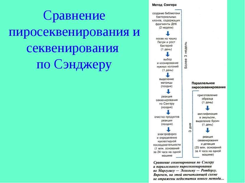 Сравнение пиросеквенирования и секвенирования по Сэнджеру