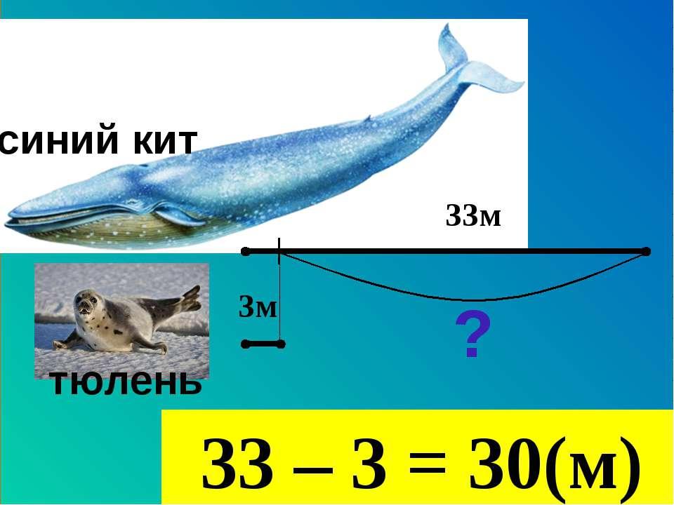 33м 3м тюлень синий кит ? 33 – 3 = 30(м)