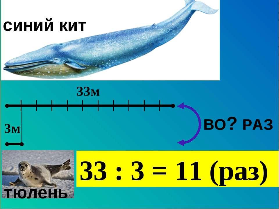 33м 3м тюлень синий кит ВО? РАЗ 33 : 3 = 11 (раз)