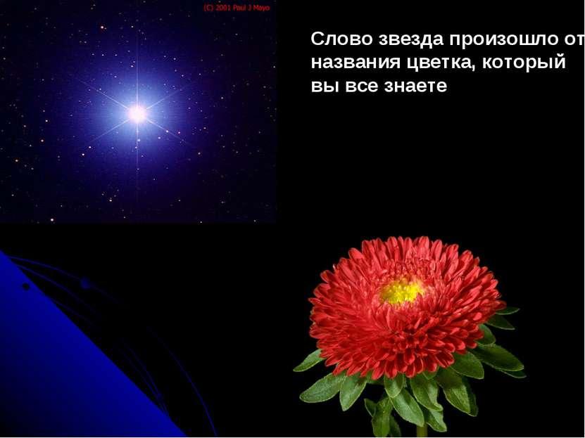 Слово звезда произошло от названия цветка, который вы все знаете