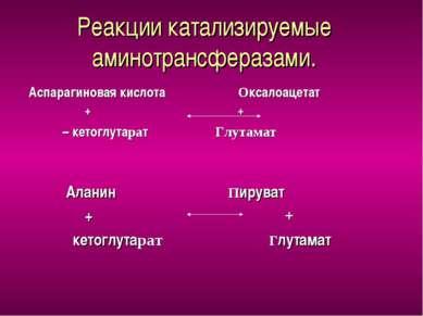Реакции катализируемые аминотрансферазами. Аспарагиновая кислота Оксалоацетат...