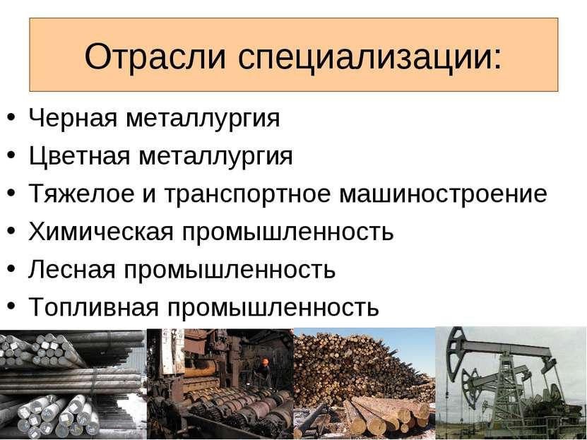Отрасли специализации: Черная металлургия Цветная металлургия Тяжелое и транс...