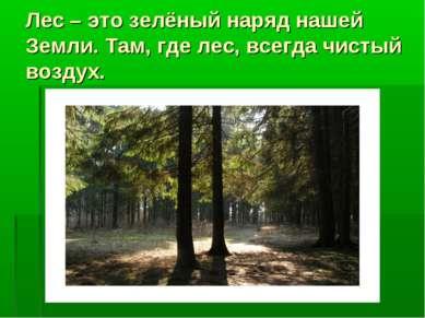 Лес – это зелёный наряд нашей Земли. Там, где лес, всегда чистый воздух.