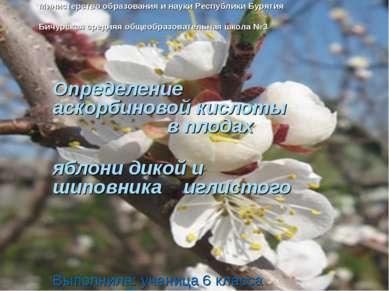 Министерство образования и науки Республики Бурятия Бичурская средняя общеобр...