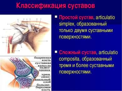 Классификация суставов Простой сустав, articulatio simplex, образованный толь...