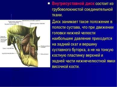 Внутрисуставной диск состоит из грубоволокнистой соединительной ткани. Диск з...