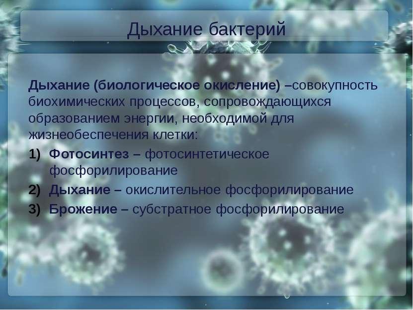 Дыхание бактерий Дыхание (биологическое окисление) –совокупность биохимически...