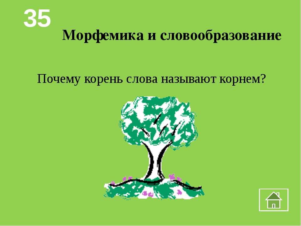 Фонетика и графика Какое русское слово состоит из трех слогов, а указывает на...