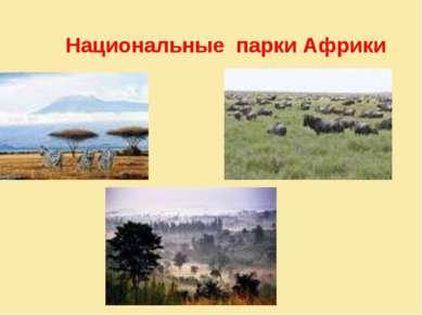 Национальные парки Африки