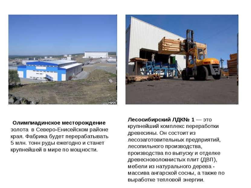 Олимпиадинское месторождение золота вСеверо-Енисейском районе края. Фабрика...