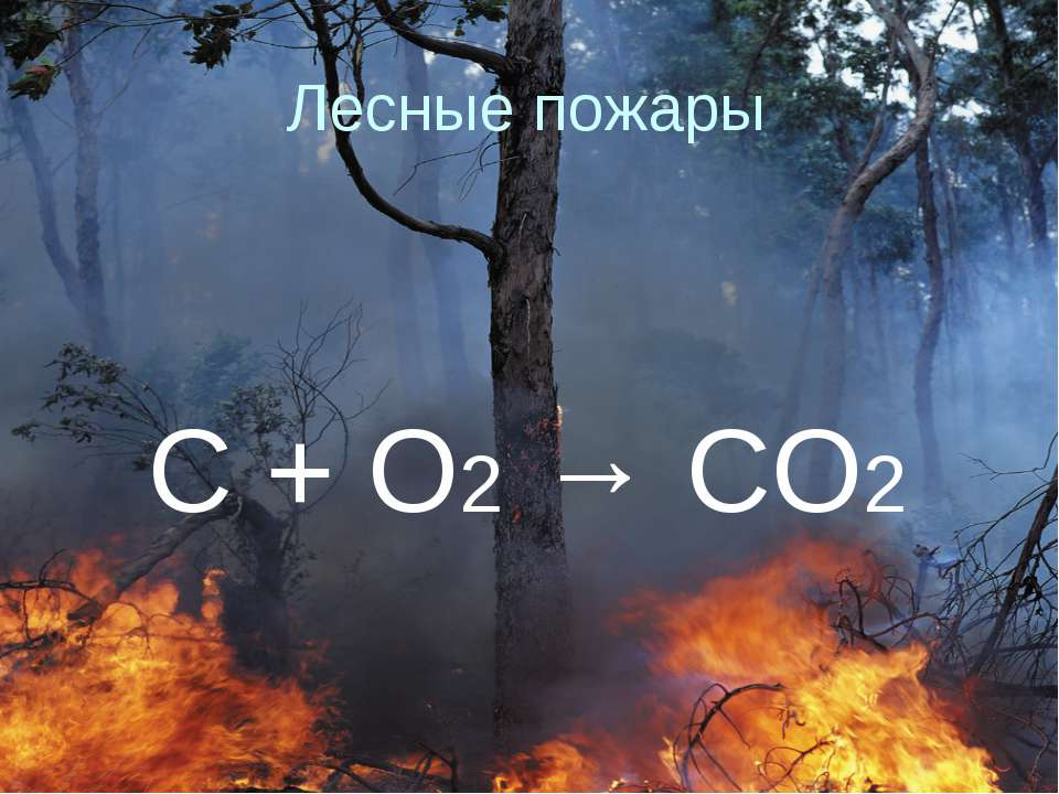 Лесные пожары C + O2 → CO2