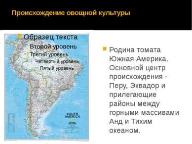 Происхождение овощной культуры Родина томата Южная Америка. Основной центр пр...