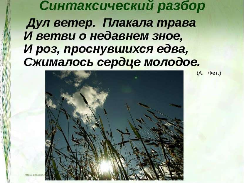 Синтаксический разбор Дул ветер. Плакала трава И ветви о недавнем зное, И роз...