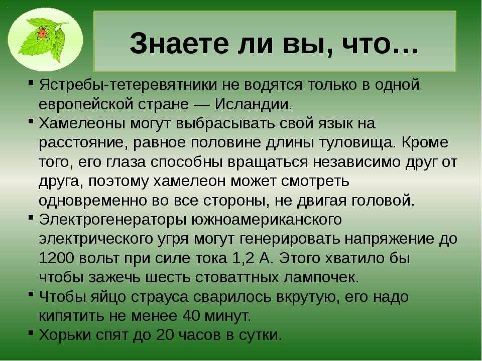 Интернет- ресурсы. Интересные факты о животных http://www.theanimalworld.ru/b...