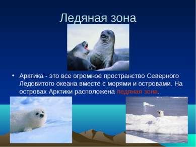 Ледяная зона Арктика - это все огромное пространство Северного Ледовитого оке...