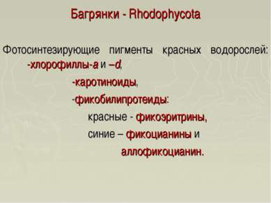 Багрянки - Rhodophycota Фотосинтезирующие пигменты красных водорослей: -хлоро...