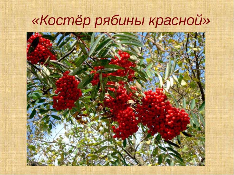 «Костёр рябины красной»