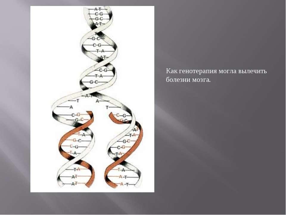 Как генотерапия могла вылечить болезни мозга.