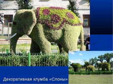 Декоративная клумба «Слоны»