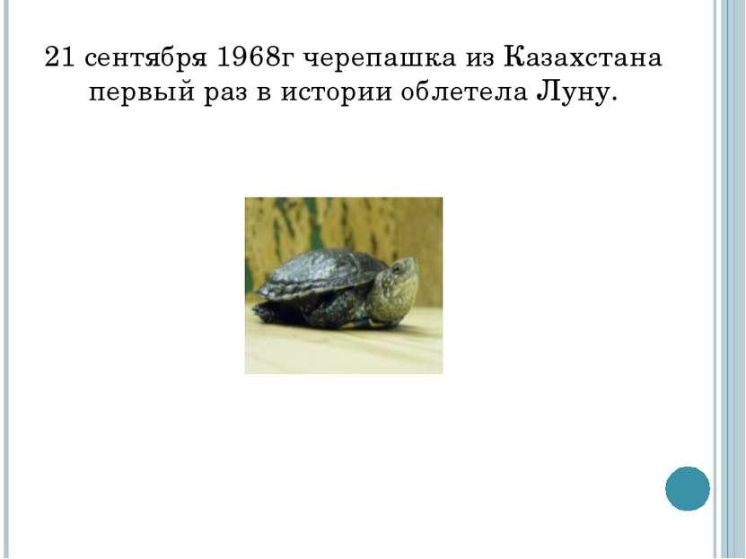 21 сентября 1968г черепашка из Казахстана первый раз в истории облетела Луну.