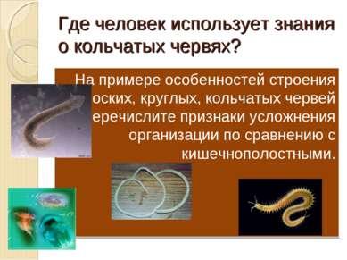 Где человек использует знания о кольчатых червях? На примере особенностей стр...