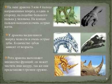 * На лапе дракона 3 или 4 пальца направленные вперёд, а один- в сторону, на п...