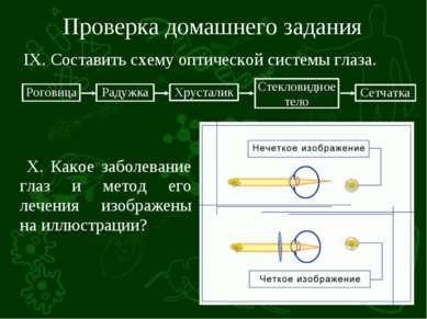 Проверка домашнего задания IX. Составить схему оптической системы глаза. X. К...