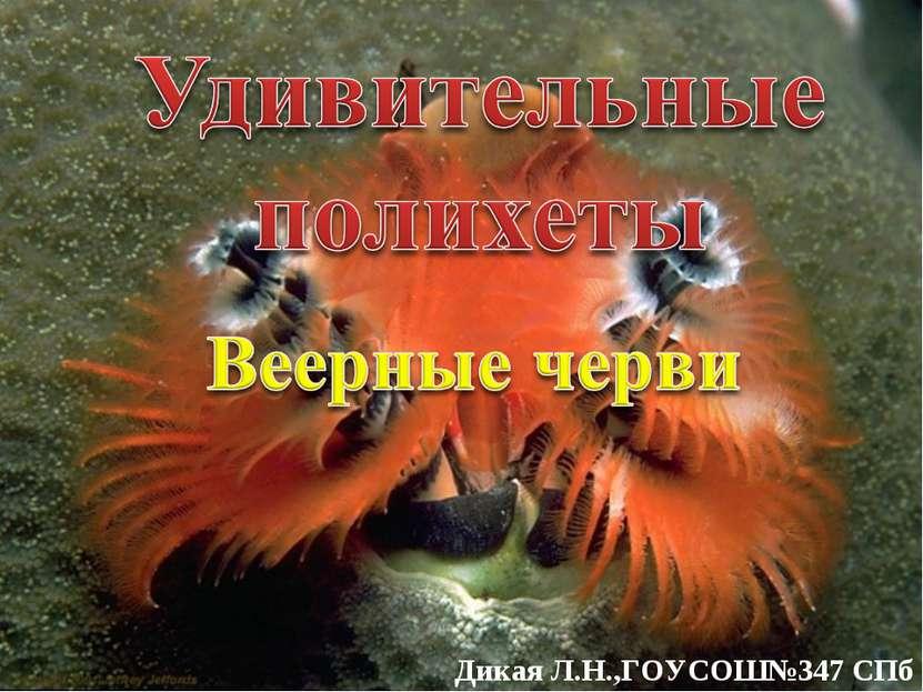Дикая Л.Н.,ГОУСОШ№347 СПб