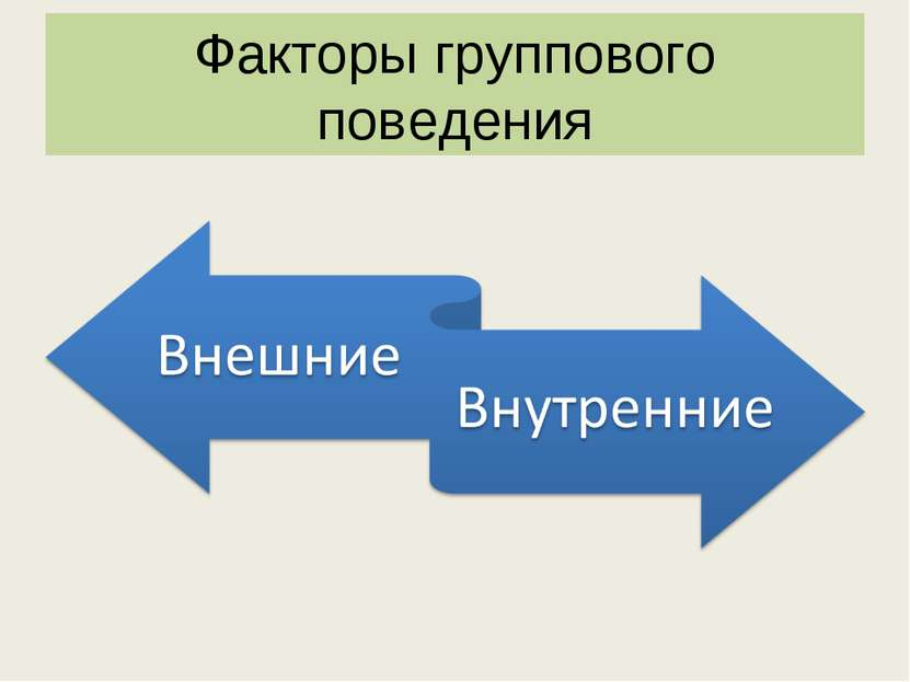 Факторы группового поведения