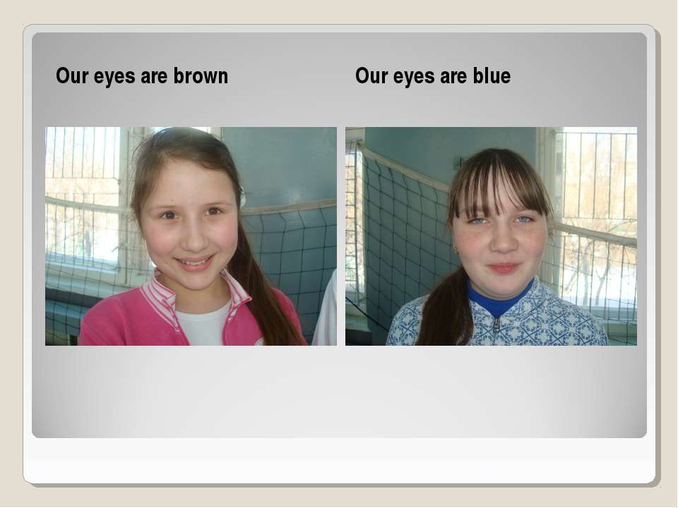 Our eyes are brown Our eyes are blue