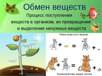 Обмен веществ Процесс поступления веществ в организм, их превращение и выделе...