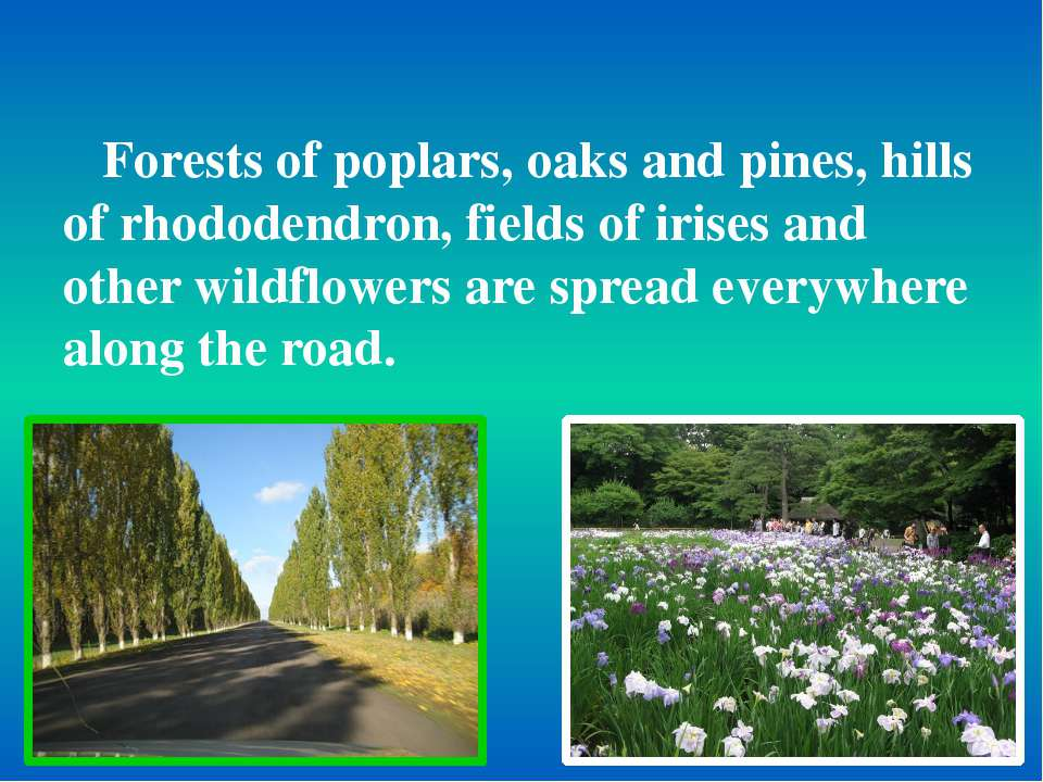 Forests of poplars, oaks and pines, hills of rhododendron, fields of irises a...