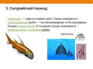 3. Силурийский период: Акантоды — одни из первых рыб. Также появляются челюст...