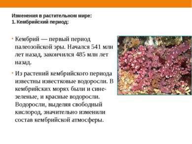 Изменения в растительном мире: 1. Кембрийский период: Кембрий — первый период...