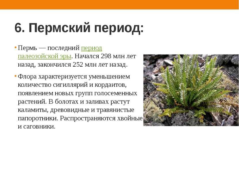 6. Пермский период: Пермь — последний период палеозойской эры. Начался 298 мл...