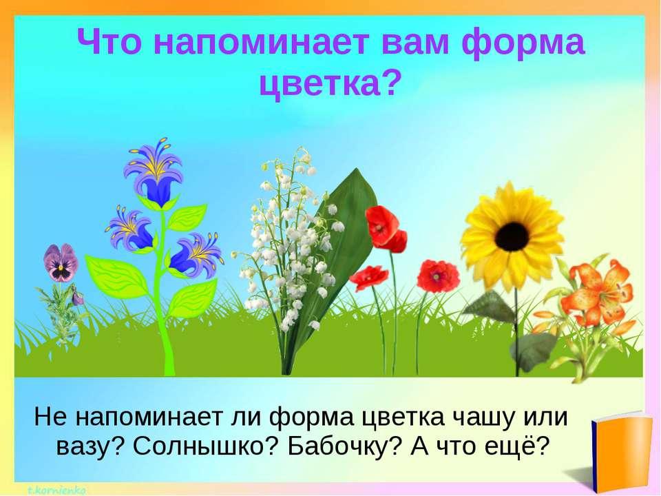 Что напоминает вам форма цветка? Не напоминает ли форма цветка чашу или вазу?...