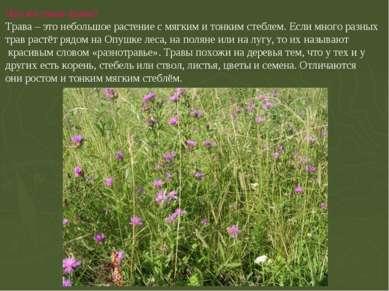 Что же такое трава? Трава – это небольшое растение с мягким и тонким стеблем....