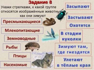 Задание 8 Укажи стрелками, к какой группе относятся изображённые животные, ка...