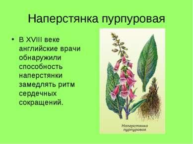 Наперстянка пурпуровая В XVIII веке английские врачи обнаружили способность н...