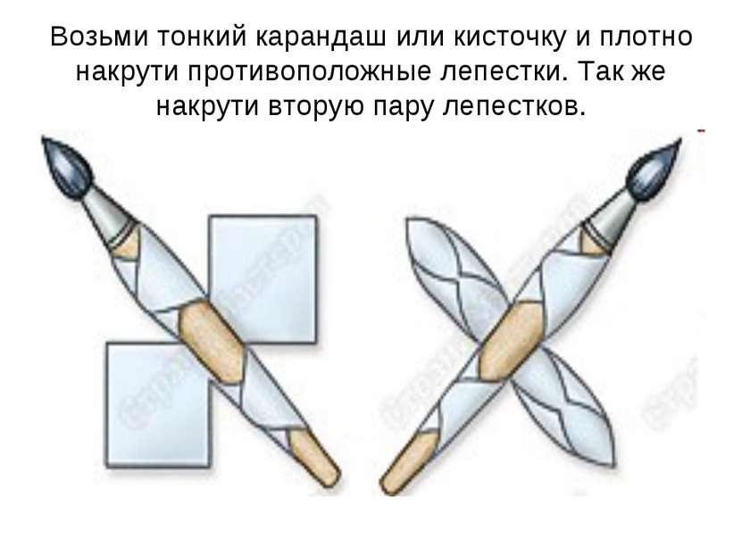 Возьми тонкий карандаш или кисточку и плотно накрути противоположные лепестки...