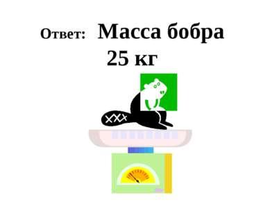 Ответ: Масса бобра 25 кг