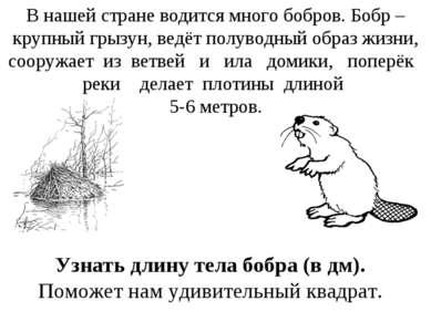 В нашей стране водится много бобров. Бобр – крупный грызун, ведёт полуводный ...