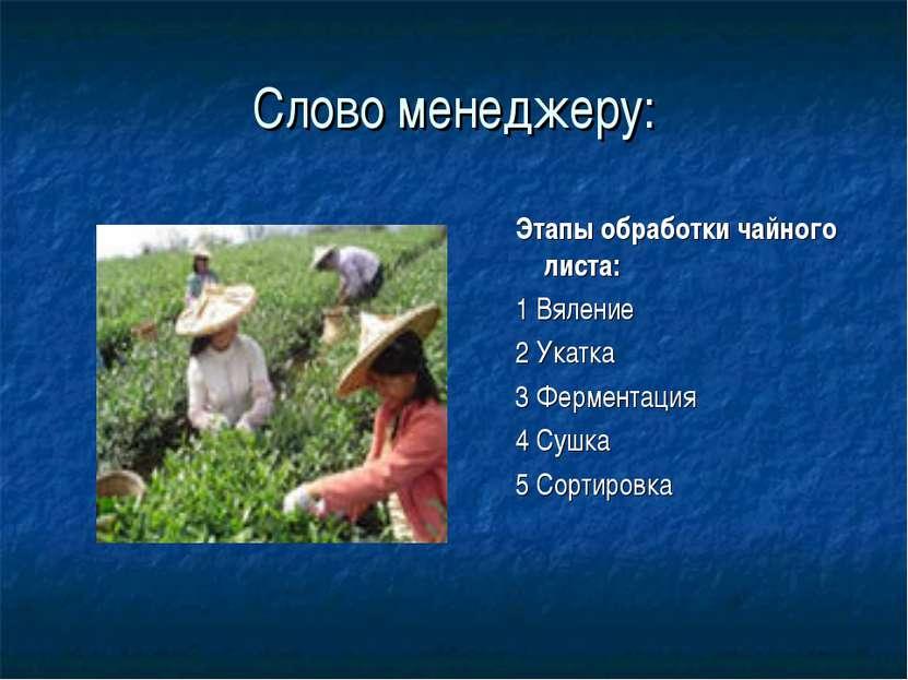 Слово менеджеру: Этапы обработки чайного листа: 1 Вяление 2 Укатка 3 Фермента...