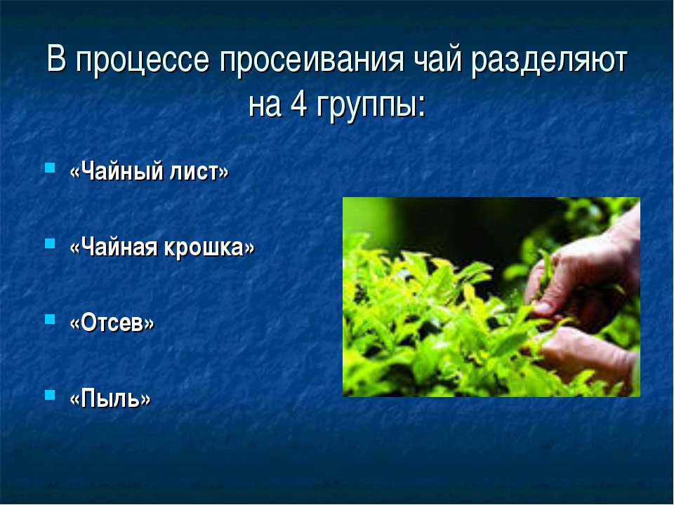 В процессе просеивания чай разделяют на 4 группы: «Чайный лист» «Чайная крошк...
