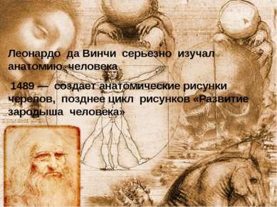 Леонардо да Винчи серьезно изучал анатомию человека 1489— создает анатомичес...
