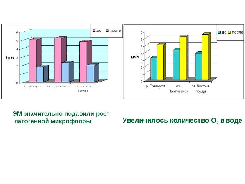 ЭМ значительно подавили рост патогенной микрофлоры Увеличилось количество О2 ...